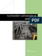 FLOTACIÓN DE MINERALES.docx