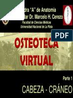 1CABEZA.pdf