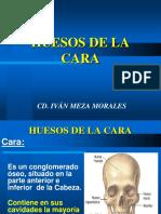 265352295-HUESOS-DE-LA-CARA-ppt.ppt