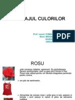LIMBAJUL_CULORILOR