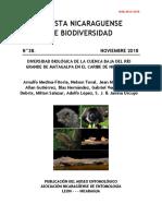 Biodiversidad Rio Grande Matagalpa