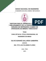 tesis_gallardo_gs.pdf