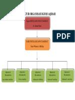 Struktur Organisasi Igd Rs Aqidah