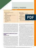 Capítulo 1 - Proliferación Celular y Neoplasia
