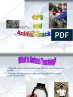 Animal Tracking and Global Positioning System