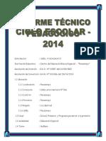 Informe Tecnico Pedagogico Para Prof Ede