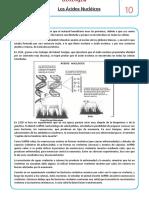 Acidos Nucleicos Nivel 2