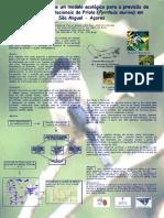 Poster Priolo - Ana Ferreira, Nuno Henrique Franco, Rita Bastos