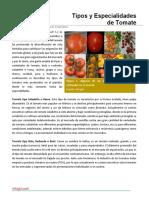 13. Tipos y Especialidades de Tomate