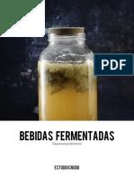 Bebidas+fermetadas