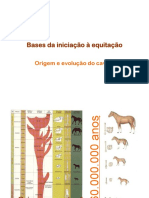 BIE 1 011009 Origemxc e Evolucao Do Cavalo.ppt