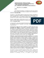 ALMIDON IMPRIMIR.docx