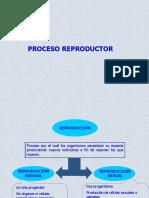 funcion de reproduccion2.pdf