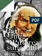 Carl Gustav Jung, Puterea Sufletului - Psihologie Individuala Si Sociala