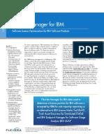 Datasheet FNM IBM