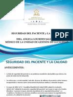 Seguridad Del Paciente y La Calidad as 050717 Uv