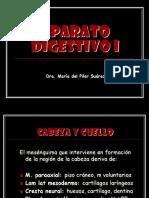 5._APARATO_DIGESTIVO_I