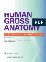 Atlas de Anatomia Anthony B. Olinger