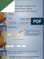 Histopatologi Esofagus Dan Lambung Akibat Substansi Asam Kuat