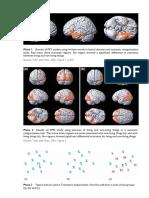 Cognitive.Psy.coloursection.pdf