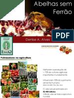 Abelhas Sem Ferr+úo.pdf