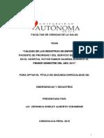 Veronica Shirley Alberto Veramendi - Calidad Registros de Enfermeria Del Paciente