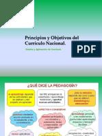109870860-Principios-y-Objetivos-de-Curriculo-Nacional.ppt