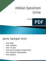 Minggu 4_Sampel Urin