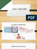 Formas Especiales Histologia Primero Ciclo