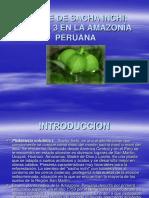 Análisis Avanzado de Concreto Armado y Albañilería Estructural