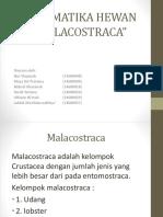 Sistematika Hewan (Malacostraca)