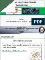 METABOLISME MIKROFLORA