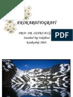 EKOKARDİYOGRAFİ-www.stetuskop.com