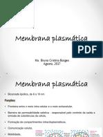 Membrana Plasmatica e Transporte de Membrana
