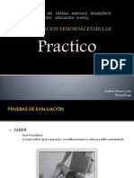 Modulo Practico (1)