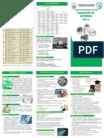 TripticoSIS.pdf