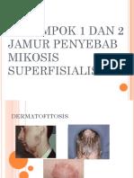 Mikosis_Superfisialis.pptx