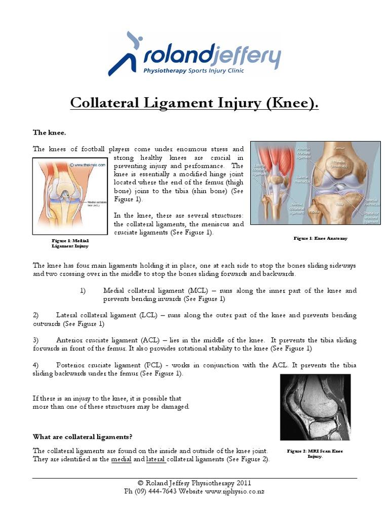 Collateral Ligament Injury Knee Knee Lower Limb Anatomy