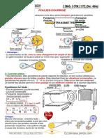 16-Polie_Courroie.pdf