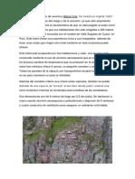 La-empresa-de-turismo-de-aventura.docx