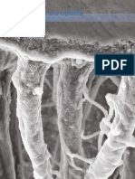 Adhesive Resin Cements for Bonding Esthetic Restorations- A Review..pdf