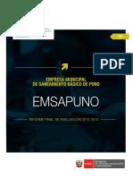 EMSA PUNO REGION PUNO.PDF
