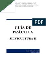 Guia Practica Pae 1
