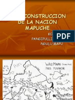 nacion mapuche