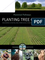 Perennial Pathways-Planting Tree Crops