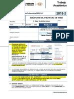 EJECUCIÓN DEL PROYECTO DE TESIS.docx
