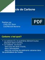Carbone Cycle