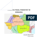 Agricultural Forestry in Romania - Nagy Alexandra-Mihaela