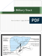 7 - The Biliary Tract