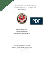 Paper Cobro Coactivo Correccion Siete de Febrero de 2018 Correcion Watson (1)